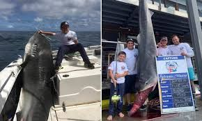 Eight-year-old boy reels in 314 kg tiger shark in Australia