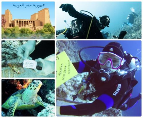 New country souvenir, Egypt, with Geocache of the Week: Tauchen im Roten Meer / Diving in the Red Sea