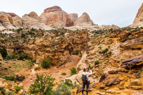 12 Don't-Miss Things to Do in Capitol Reef National Park Utah