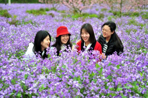 China sees 112 mln domestic tourist trips during tomb-sweeping holiday