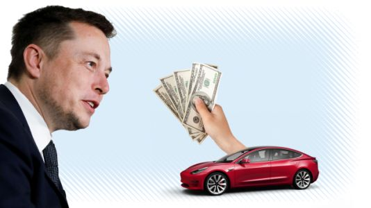 Reddittor Wonders: Should I Just Give Elon My Money?