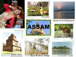 Assam tourism should focus on visitor needs