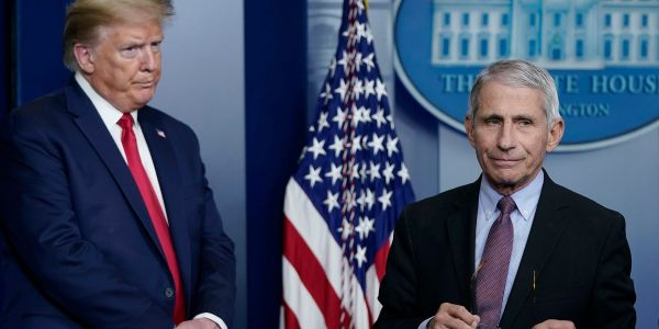 White House press secretary says Trump and Fauci have 'a good working relationship,' even though they reportedly haven't spoken since the first week of June