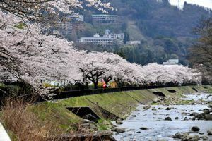 Japan's Mitsui Fudosan to open luxury hotel Hakone in 2022