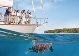 Turtle tourism - The new economic driver of Australia