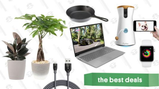 Wednesday's Best Deals: Apple Watch, Pyrex, Plants, Anker Cables, and More