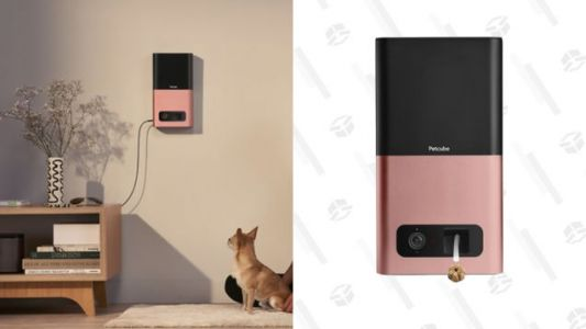 Give Your Pet Treats From Anywhere With $125 Off a P