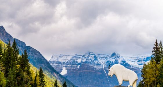 7 Best Viewpoints in Canada