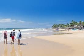 Struggling tourism sector of Sri Lanka sees signs of hope