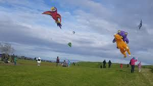 Celebrate universal tradition of kite flying with Manu Aute Kite Day