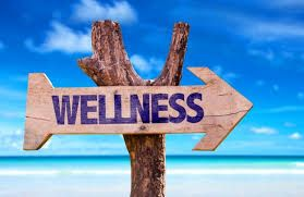 The revival of health & wellness tourism in India