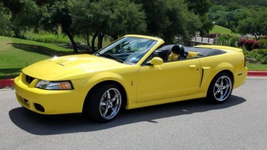 At $19,900, Would You Let This 2003 Ford Mustang Cobra Sink Its Fangs Into Your Wallet?
