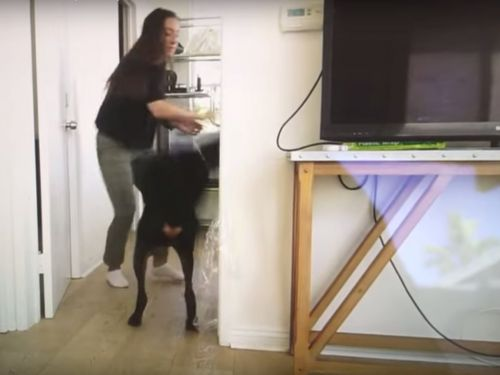 A YouTuber is defending herself after accidentally uploading raw footage showing her hitting and spitting on her dog