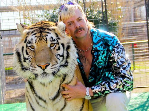 One murder-for-hire plot, five husbands, and 176 tigers: Meet Joe Exotic, the 57-year-old star of Netflix's smash hit 'Tiger King'