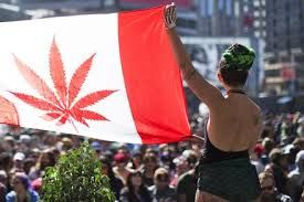 Canada all set to become a major competitor for weed tourism