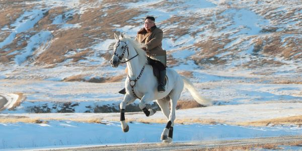 North Korea spent tens of thousands of dollars on purebred horses from Russia last year