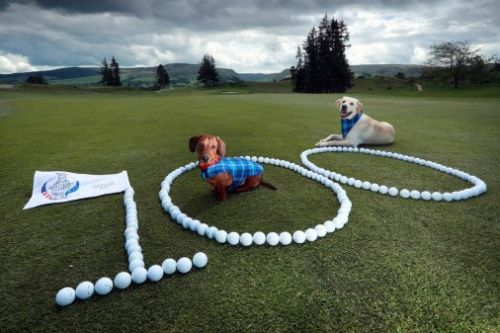VisitScotland: All roads 'lead' to the Home of Golf