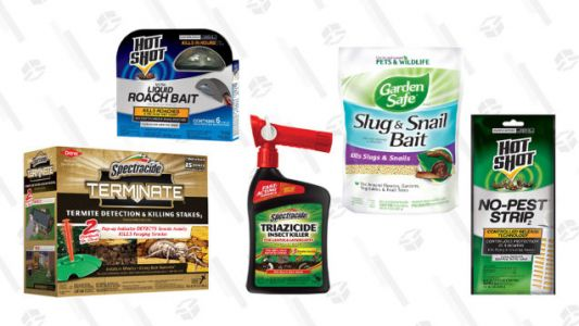 Save Big on Pest Control Products with Today's Gold Box