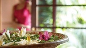 The Spa at Four Seasons Hotel The Westcliff Johannesburg Welcomes expert Spa therapists