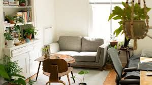 London opens world's first house plant hotel