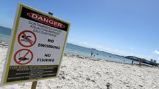 Sun, Sand And Sewage: Report Shows Many U.S. Beaches Unsafe For Swimming