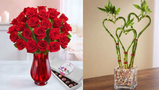 Order Valentine's Day Flowers a Month Early, and Get 25% Off at 1800Flowers