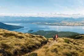 Slowing tourism numbers to New Zealand should be taken into account, say experts