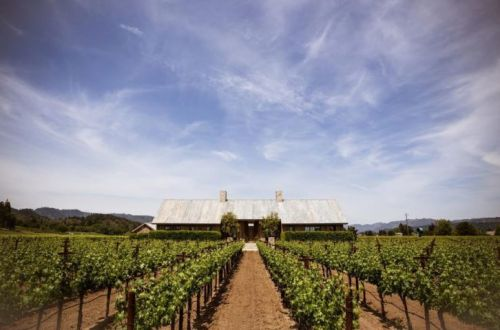 Nobu Hotel Epiphany Palo Alto Launches Napa Valley Tour