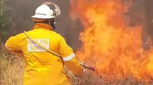Emergency exclusion zone declared as fire burns opposite Gold Coast's Sea World park