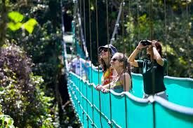 2.5% increase in UK visitors to Costa Rica