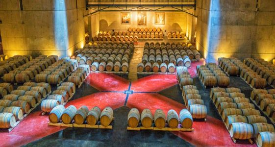 7 Wineries to Visit in Argentina