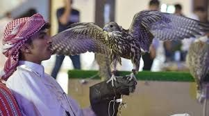 Saudi Falcons and Hunting Exhibition 2019 already attracted over 70,000 visitors