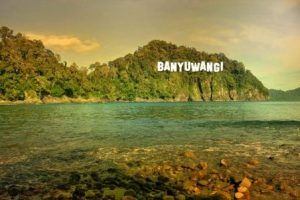 East Java's Banyuwangi to hold 99 tourism events throughout 2019