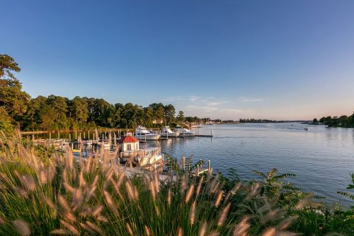Northern Neck, Virginia: Oysters, Seafood, & History