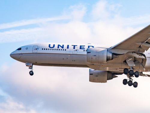 A United Airlines passenger was stung by a scorpion that reportedly fell out of her pant leg