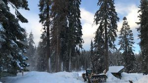 Sequoia and Kings Canyon national parks closed due to winter storm in California